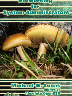 Networking for Systems Administrators